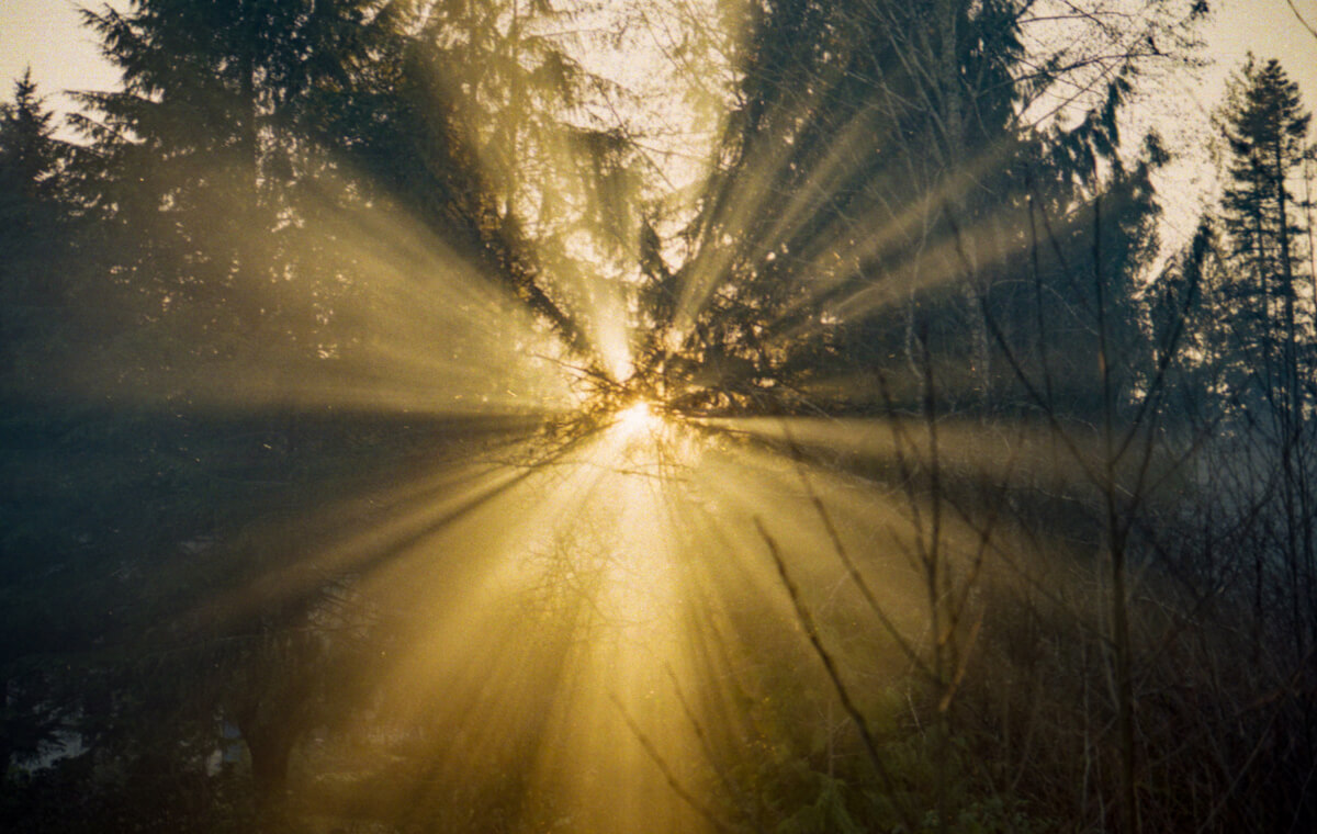 5 Frames... Of island life on Kodak Gold 200 (35mm Format / EI 200 / Leica M4-2) - by Ryan HK