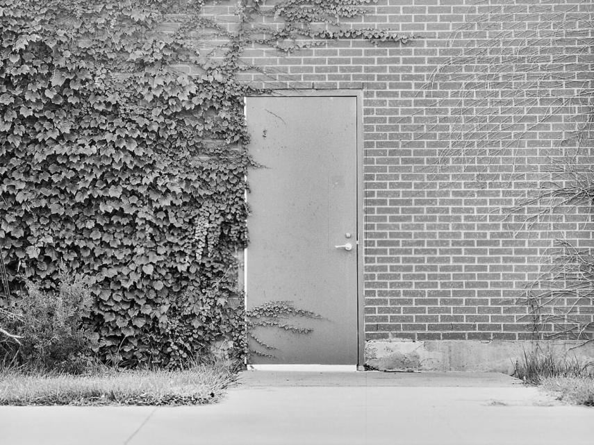 5 Frames... With Lomography Potsdam Kino 100 on a Mamiya 645 AFD (120 Format / EI 100) - by Tyler Longfellow
