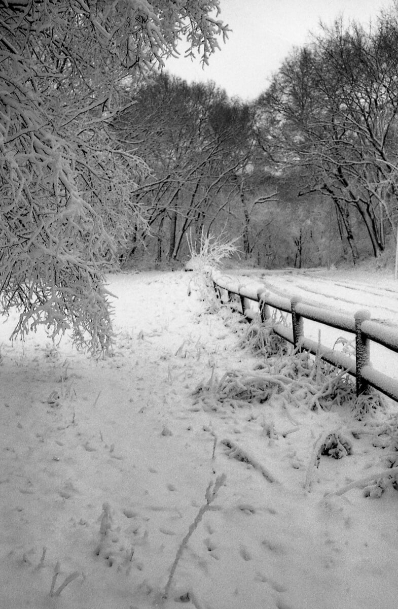 5 Frames... Of ILFORD Delta 100 Professional in the snow (35mm format / EI 50 / Nikon F + Nikon Nikkor-S 35mm f/2.8) - by Steve Bode