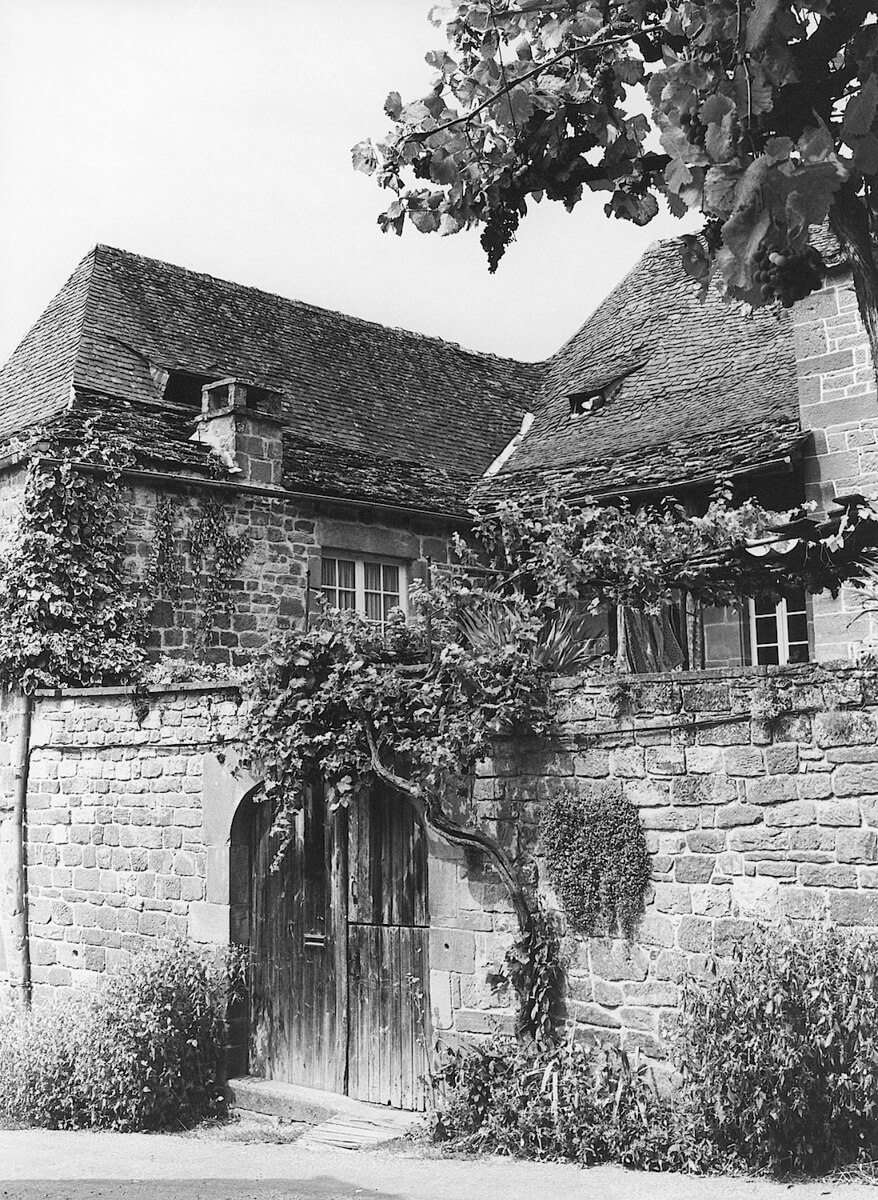 1981 - Village house with vines