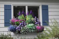 Window box garden - GardenPuzzle - online garden planning tool