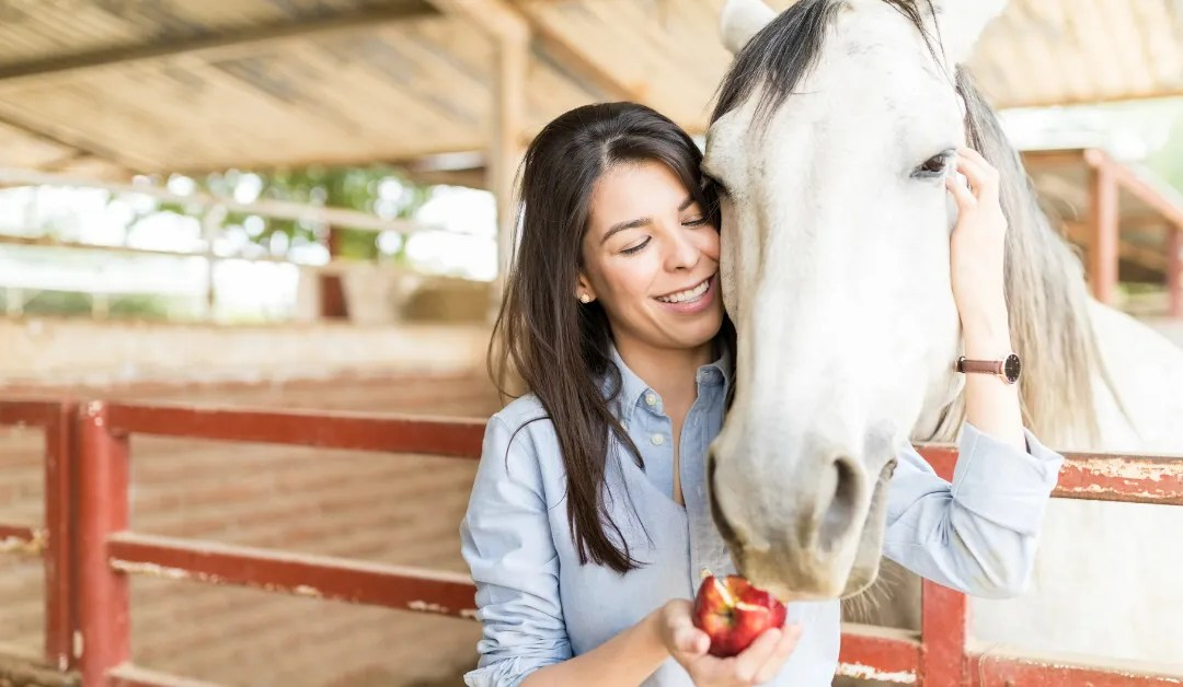Focus on advances in equine nutrition