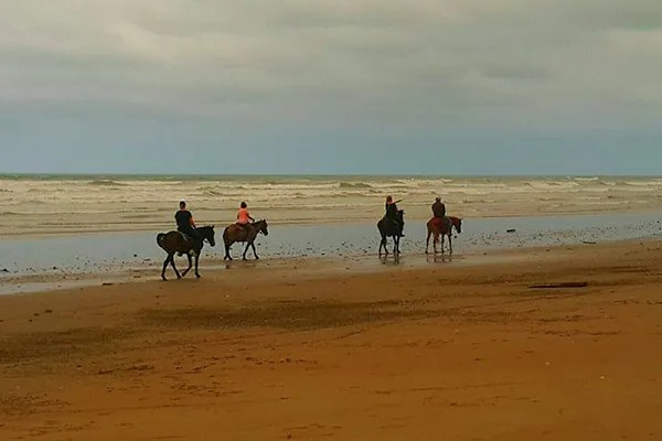 The beauty of riding a horse on the beach