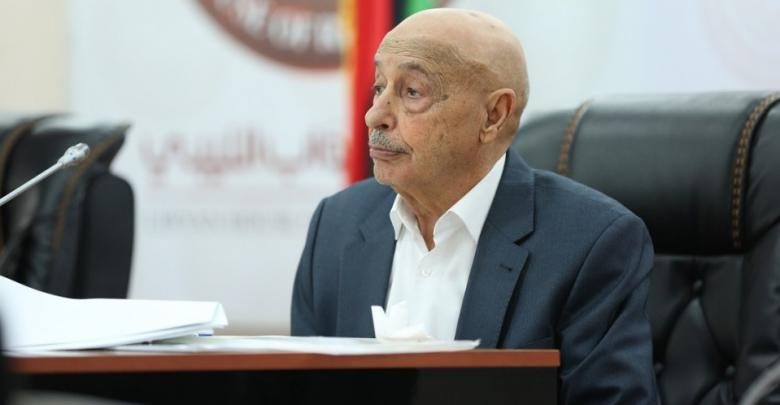 Photo of Upcoming elections can be Libya's only political solution: Saleh