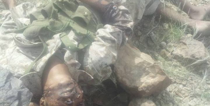 3 Coup militants killed in al-Bayda's Dhy Naem