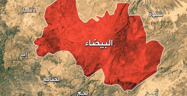 Over five militants killed and wounded in Albaidah