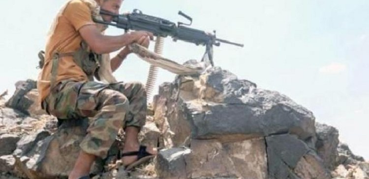 Armed forces make successive victories western Taiz