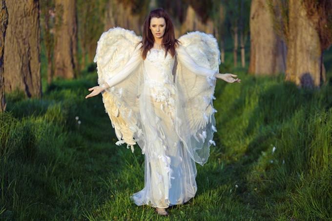 Anjo nas madeiras
