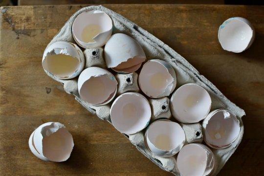 Cosas que no debes tirar por el fregadero cáscaras de huevo