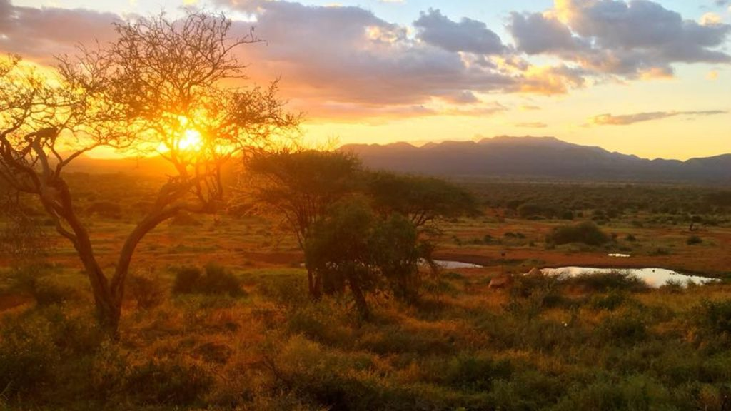 Sunset in Tsavo National Park, 180630