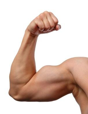 Toning biceps