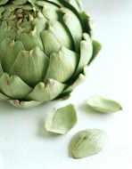 Artichokes Recipes