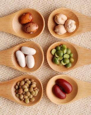 Macrobiotic Diet, medical diet