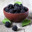 Three recipes to incorporate blackberries into your cooking
