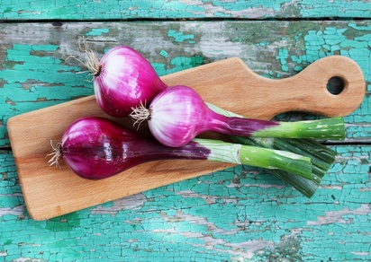 Recipes with Purple Onions