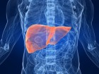Five Pieces of Advice for Liver Health