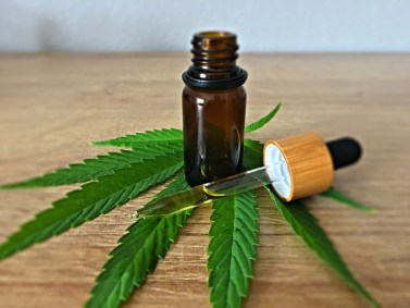 Using CBD to take care of your health