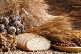 The whole-grain bread and its derivatives