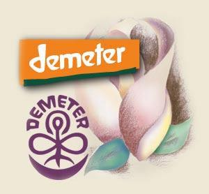 The thirteen reasons of Demeter against GMOs