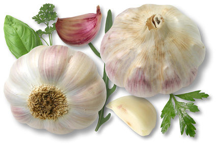 Two Garlic recipes for the kitchen