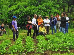 Organic agriculture, star of the 22nd edition of Bioculture