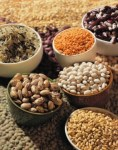 Macrobiotic: How should we eat?