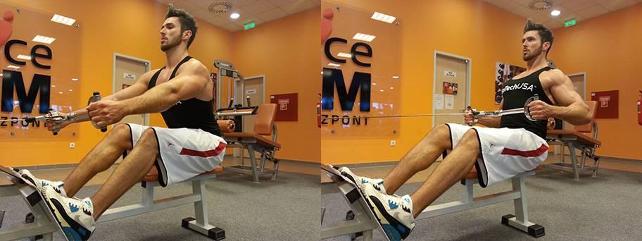 Bulking Workout Week 4 Day 2 Biotechusa