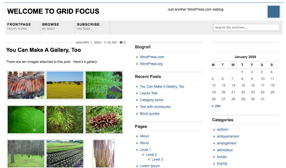First Theme of 2009: Grid Focus