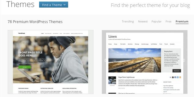 Premium themes showcase