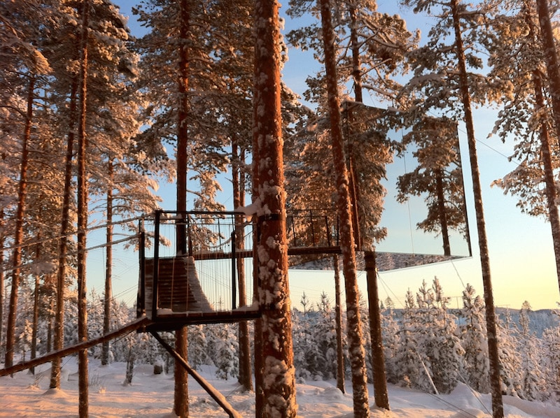 Coolest Hotels to Fall Asleep Watching the Northern Lights In: Treehotel