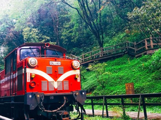 Ultimate Guide to Taiwan: The Alishan Forest Railway