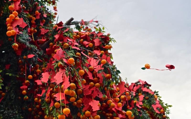 Chinese New Year in Hong Kong: Lam Tsuen Wishing Trees