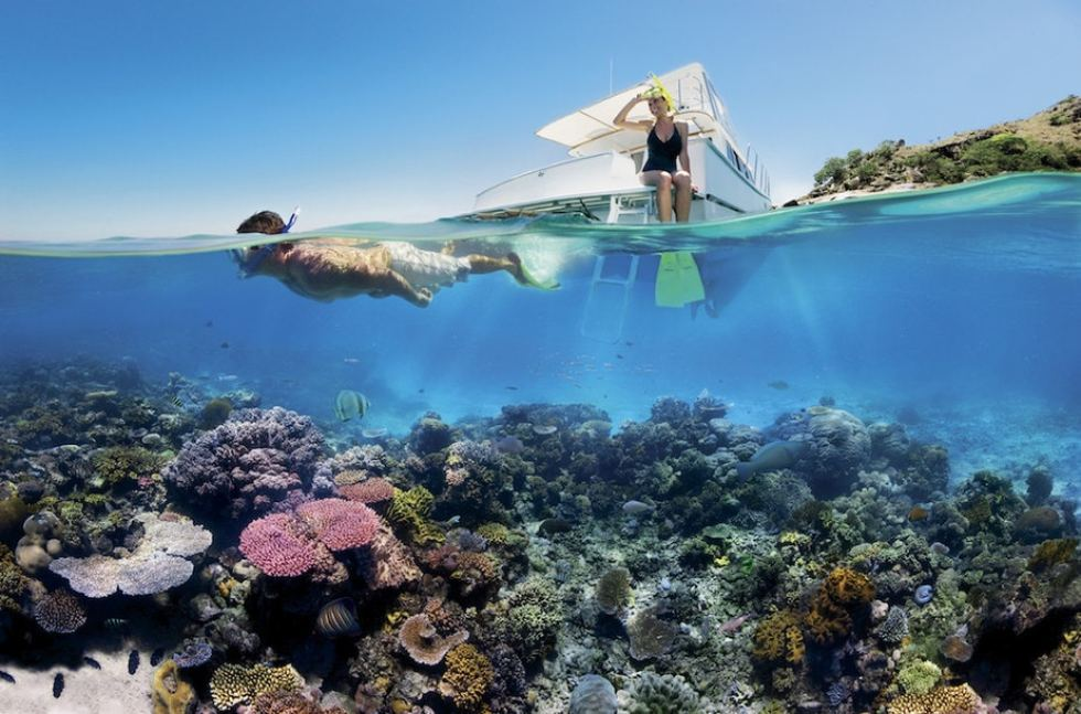 Great Barrier Reef Tour: Green Island and Norman Reef