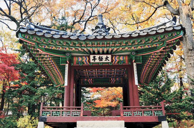 7 Fun and Unique Things To Do In Korea This Spring
