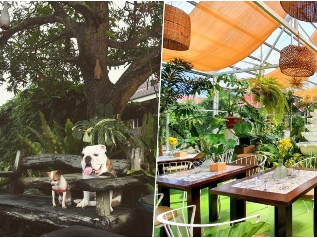 Pet-Friendly Cafes And Restaurants In Tagaytay To Dine And Chill With Your Furbabies