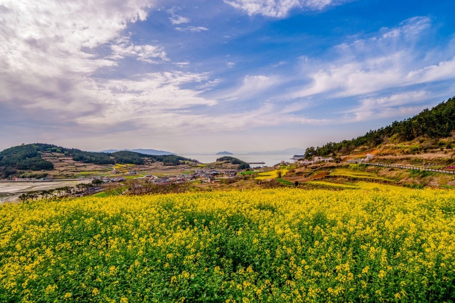 8 Picture-perfect Destinations In South Korea For Nature Lovers