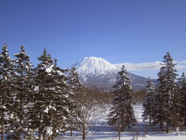 Visiting Japan in Winter 2019-2020: A Survival Guide