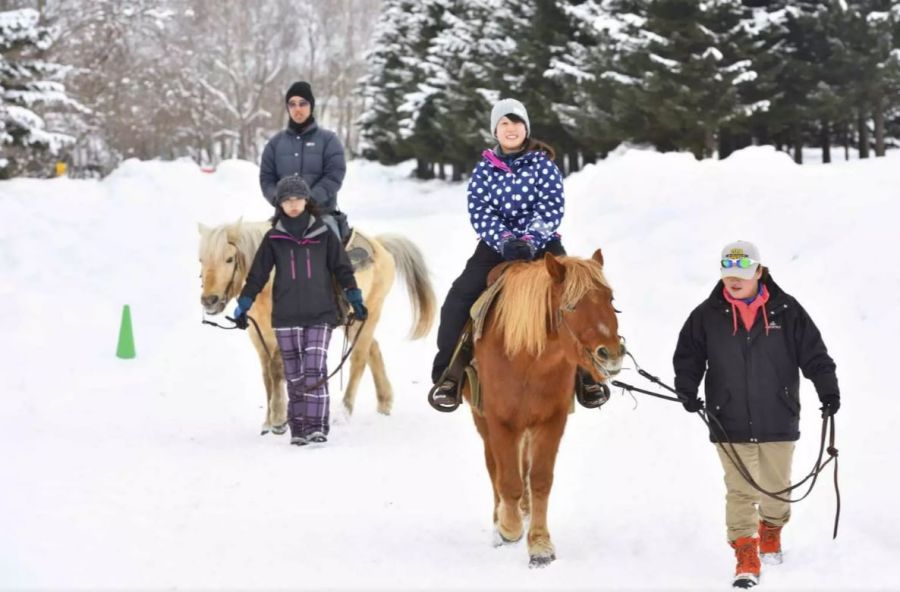 Horseback riding in snow