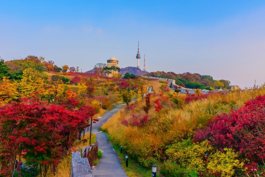 Best Places for Autumn Leaf Peeping in South Korea