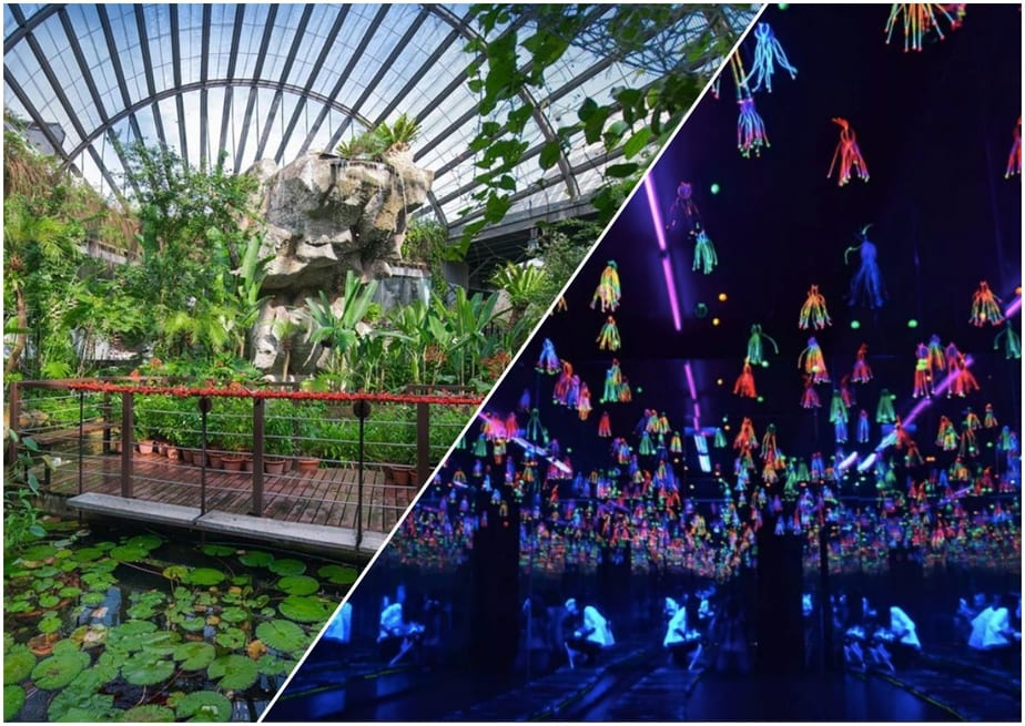 5 Mind-Blowing Parks And Museums You Must Visit In Penang