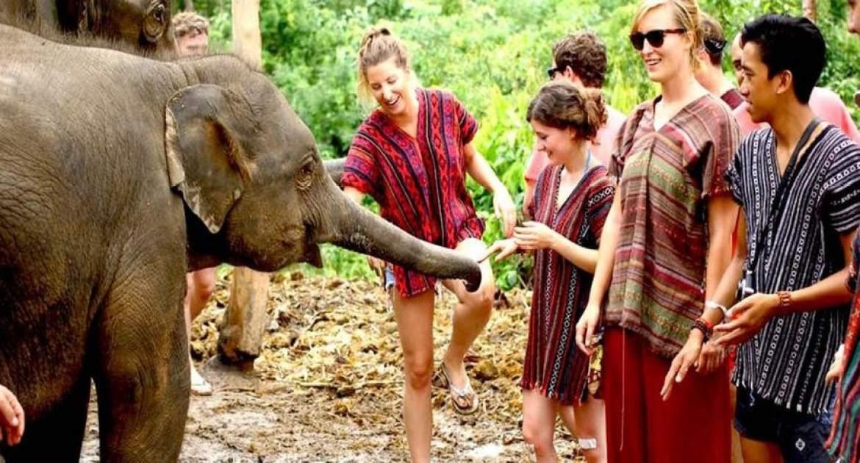 Elephant Sanctuary: Chiang Mai, Thailand