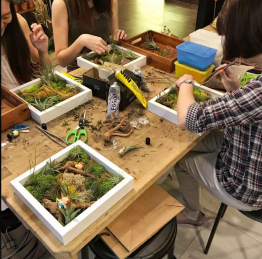 airplant greenwall workshop
