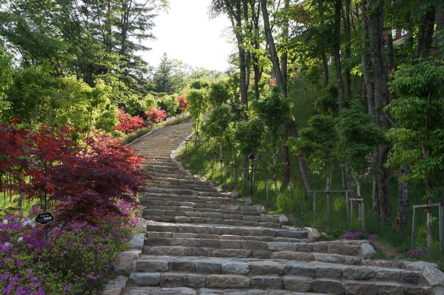 On the way to Sangwon-sa Temple (image via Shutterstock)