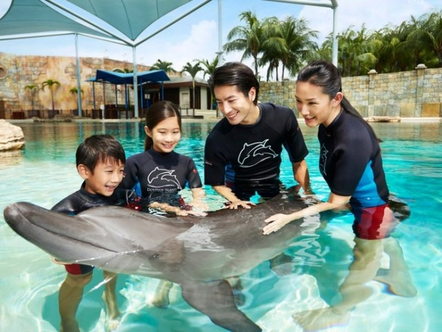 Your Guide To Visiting Resorts World Sentosa's Dolphin Island (2021)