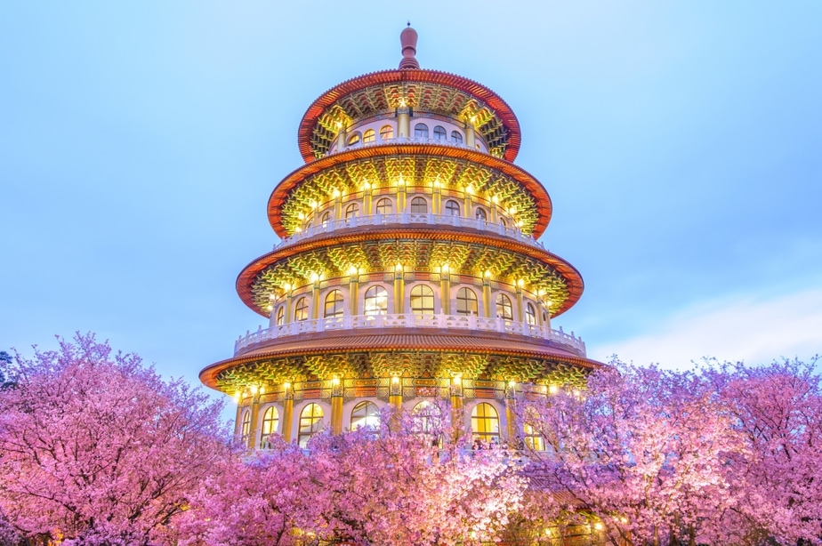 Where to See Cherry Blossoms in Taiwan This Spring