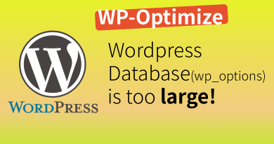 Wordpress DB is too large