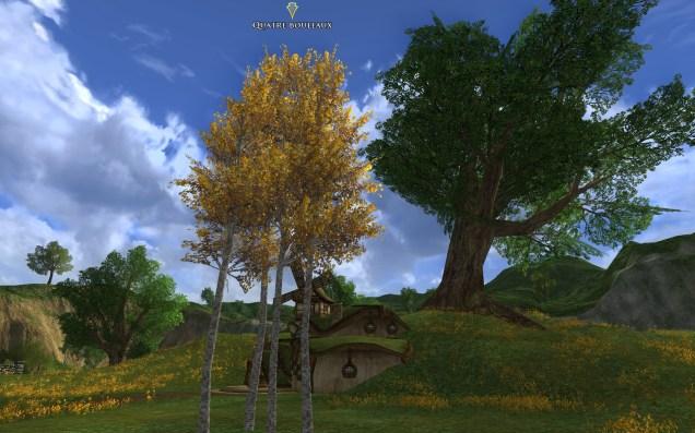 ScreenShot00817