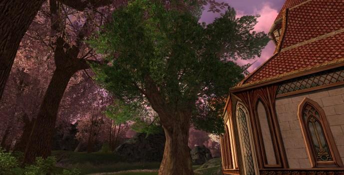 Shire Oak Tree