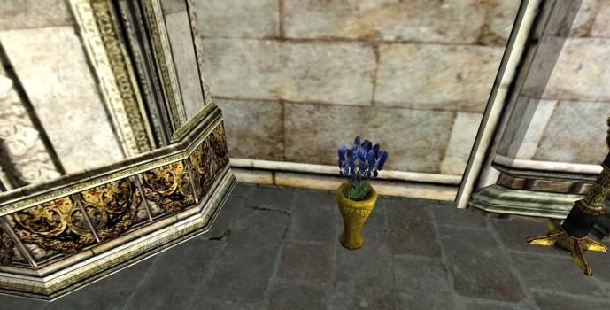Bluebottle Arrangement