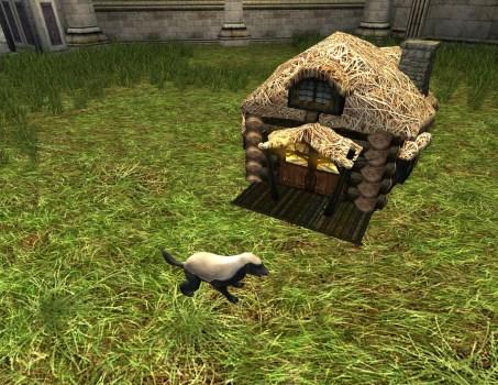 Badger House